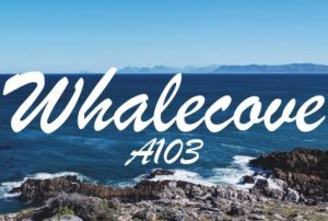 Whalecove Apartment A103